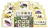 Gift Set of 2015 British Bees Stamps in Presentation Pack inc. M/S and PHQ Cards