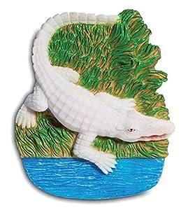 Katerina Prestige-Imán Crocodile, ME1073, Color Blanco