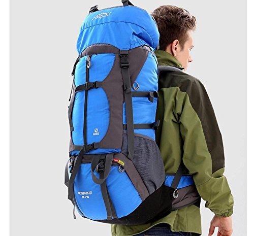 ROBAG Professional outdoor wandern Rucksack Reise Tasche 80L Liter Rucksäcke Team Rucksack blue