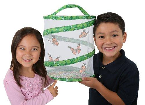 live-butterfly-garden-sent-with-caterpillars-no-voucher-to-redeem