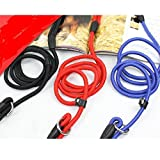 #2: Pet Wholesale Nylon Rope Training Slip Lead Strap Adjustable Leash For Small And Medium Dogs (Colour May Vary)