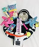 StarterSet für Hunde/Welpen, mittel Bett, Spielzeug, Halsband und Leine, mittel Bett
