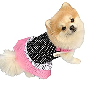 Angelof Animaux De Compagnie Chien Chiot Princesse Robe Point Jupe Costume Party
