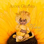Anne Geddes Signs of the Zodiac 2017...