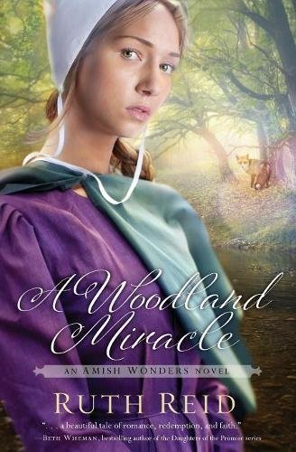 A Woodland Miracle The Amish Wonders Series