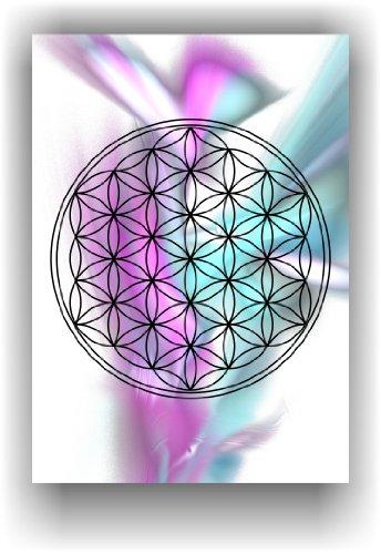 the-flower-of-life-flower-of-life-life-flower-mural-decoration-image-chakras-energy-picture-art-prin