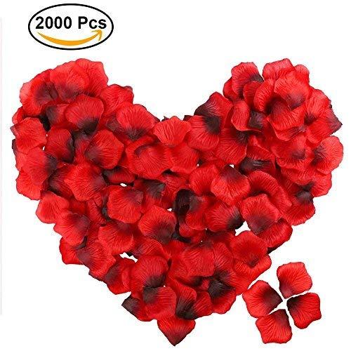 FunRun 2000pcs petali di rosa finti rossi coriandoli , Petali di Rosa Rossa in Seta per Decorazione di Matrimonio, Decorazioni di San Valentino, Proposta di Matrimonio