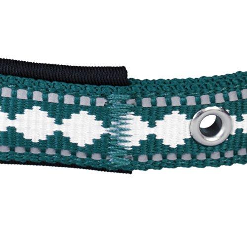 Blueberry Pet Halsbänder für Hunde Klassisches Einfarbige 2 cm M Neopren Reflektor Sicherheitshundehalsband in Petrol mit Jacquardmuster, Passender Hundegeschirr & Hundeleinen erhältlich separate - 5
