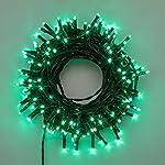 LuminalPark Catena 13,1 m, 180 miniled Bianco Caldo, con Memory Controller, Cavo Verde, 30V, Esterno