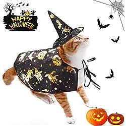Legendog Disfraz de Halloween de Gato, Capa de Mago con Gorro Traje de Mascota Disfraz de Halloween Sombrero Accesorios de Cosplay para Gatos y Perros pequeños