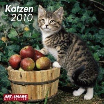 2010 Cats A&I Grid Calendar