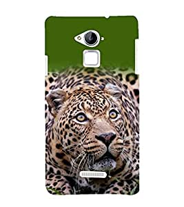 printtech Nature Animal Leopard Back Case Cover for Coolpad Note 3
