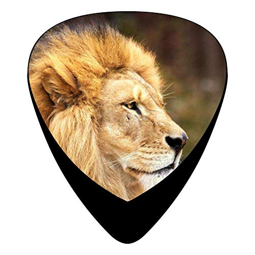Lion Face Guitar Picks Celluloid Print Womens Complete Assorted 12 Pack