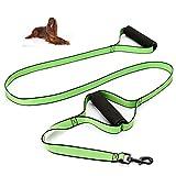 SXELODIE Zwei Eva-Griff-Haustier-Leine-Hundeleine Nylonmaterial-Großer und Mittlerer Hunde-Spezieller Ausbildungshund-Hund 183Cm (Ungefähr 72.05In),Green