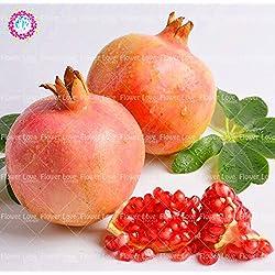 30pcs Köstliches Non-GMO Bonsai Granatapfelbaum Samen Inrdoor Bio-Fruchtsamen Super Sweet Obst Pflanzen Für Hausgarten