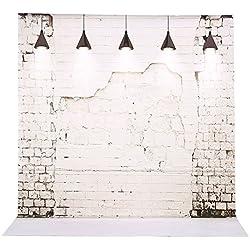 Andoer 2 * 3m/6,6 * 9,8 ft Toile de Fond Photo Pliable en Fibre Chimique Anti-Reflet pour Photographie Vidéo et Studio(7 Choix pour Le Dessin)