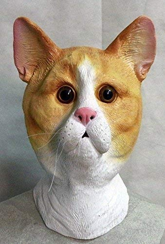 The Rubber Plantation TM 619219293518 Ginger and White Latex Cat Mask Feline Tabby Tom Animal Halloween Disfraz de Halloween, Unisex Adulto, Talla Única
