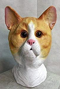 The Rubber Plantation TM 619219293518 Ginger and White Latex Cat Mask Feline Tabby Tom Animal Halloween Disfraz de Halloween, Unisex Adulto, Talla Única