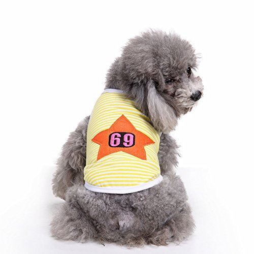 Kasten Kostüm Hunde Tragen - Haustier-Weste, Haustier-kleiner Hundekleidung-T-Shirt gestrickte Mantel-Kasten-Schutz-Art- und Weisekleider zwei Füße tragen Weste-Kostüm 2 Farbe u. 4 Größe (Color : Yellow, Size : L)