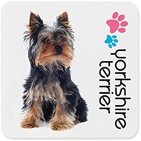 Dimension 9 Yorkshire Terrier Coaster, White by (Yorkshire Terrier Coaster)
