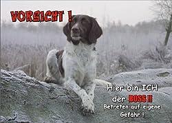 INDIGOS UG - Türschild FunSchild - SE570 DIN A4 ACHTUNG Hund Kleiner Münsterlände?r - für Käfig, Zwinger, Haustier, Tür, Tier, Aquarium - aus hochwertigem Alu-Dibond beschriftet sehr stabil