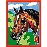 Malen nach Zahlen - Jeder kann malen (Mal-Sets), Bildgröße: 18 x 24 cm Pferd beim Reitturnier