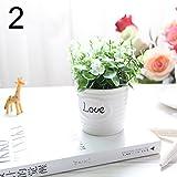 FYYDNZA Kleine Künstliche Pflanzen Dekorative Blumen Mini Topf Wasserkocher Bonsai Valentinstag Grass Handmade Geschenk 1 Satz (Pflanzen + Vase), 2