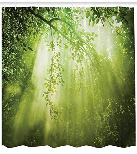 ABAKUHAUS Wald Duschvorhang, Sunbeams in Woodland, Hochwertig mit 12 Haken Set Pflegeleicht Farbfest Wasser Bakterie Resistent, 175 x 200 cm, Grün (Sunbeam Wasser)
