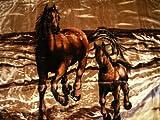 Kuscheldecke Tagesdecke Decke Motiv Pferd mit Fohlen braun 160x200cm