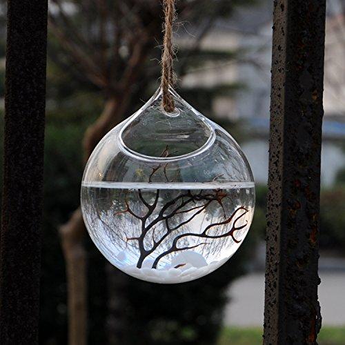 Vaso Vetro A Sfera Porta Fiore Piante Decorazioni Casa Giardino, Appendibile, Dia.12cm