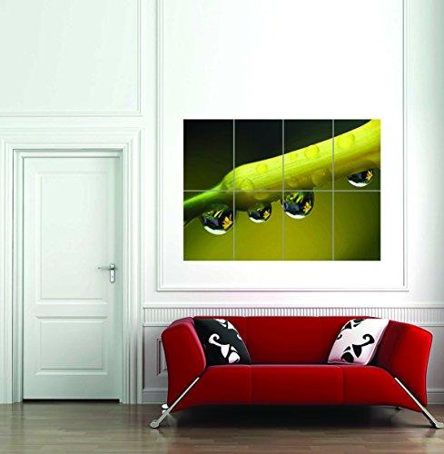 Doppelganger33 LTD Dew Drops Stem Plant Leaf Giant Wall Art Print Home Decor Poster -