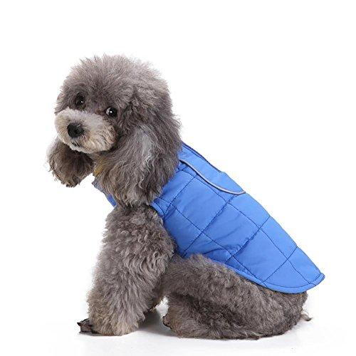 Myyxt Hund Cat Jacke Weste Soft Warm Herbst Winter Hergestellt aus Polyester Kleidung , (Riesige Kostüme Brüste /)