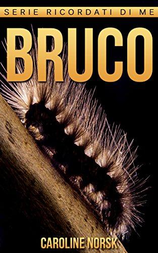 bruco-libro-sui-bruco-per-bambini-con-foto-stupende-storie-divertenti-serie-ricordati-di-me