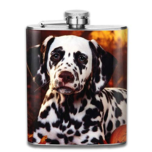 Wine Water Hip Flask for Liquor Stainless Steel Bottle Alcohol 7oz ()