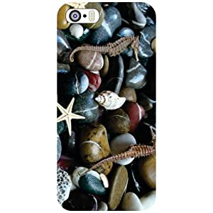Printland Countless Pebbles Phone Cover For Apple iPhone 5S
