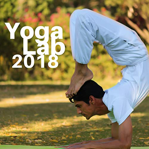 Yoga Lab 2018 - Modern Design Instrumental Music with Sounds of Nature