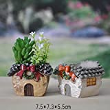 New Garden Decoration Mini Resin Flower pot de fleur Personalized Microcosmic artesanato Flowerpot D