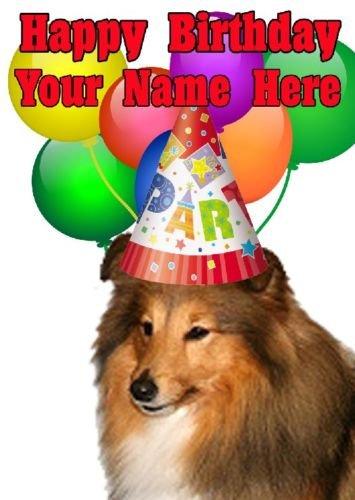 Shetland Sheepdog Hund Party Hat Karte codeshe Personalisierte Geburtstags A5Grußkarte -