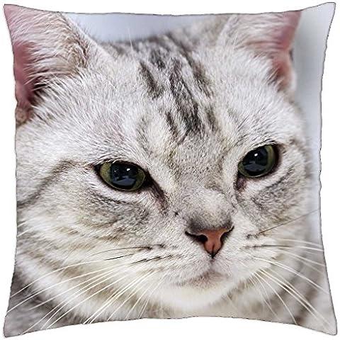 Dulce de cara de gato - Funda de cojín (18