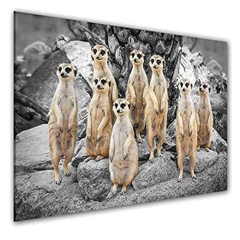 BILDER-MANUFAKTUR LEINWAND KUNSTDRUCK WANDBILD BILD BILDER, 8307 Farbe 3, 70 cm x 45 cm ERDMÄNNCHEN SURIKATE SCHARRTIER NATUR TIERE MANGUSTEN AFRIKA