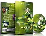 Entspannungs DVD - Lotus Teich für Entspannung und Meditation