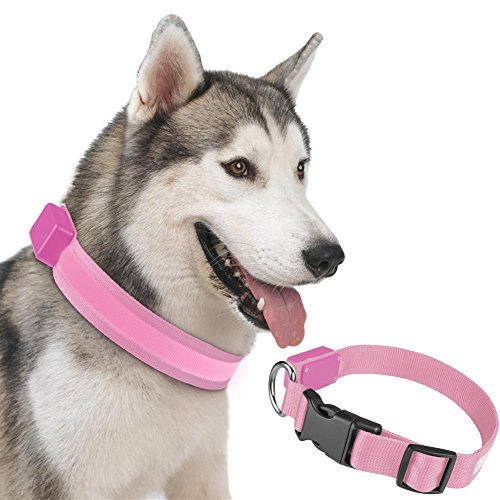 led-dog-collar-petbabab-rechargeable-flashing-light-quick-release-buckle-adjustable-training-collar-