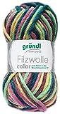 Gründl Filzwolle Color 50g (Pastell Color 44)