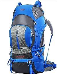 ZQ 75L L Paquetes de Mochilas de Camping / Mochilas de Senderismo / mochila Acampada y Senderismo / Escalar / Viaje Al Aire LibreImpermeable , red