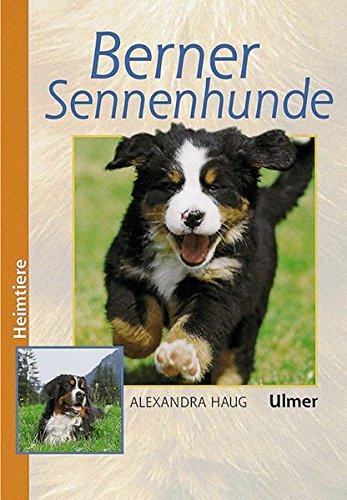 Produktbild bei Amazon - Berner Sennenhunde (Heimtiere)
