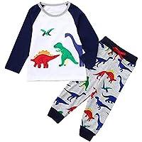 Huihong 2 Pcs Kinder Jungen Mädchen Kleidung Sets Langarm Dinosaurier Print Tops + Lange Hosen Outfit Sets