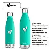Aorin 500ml Trinkflasche (Smaragd Grün) - 6