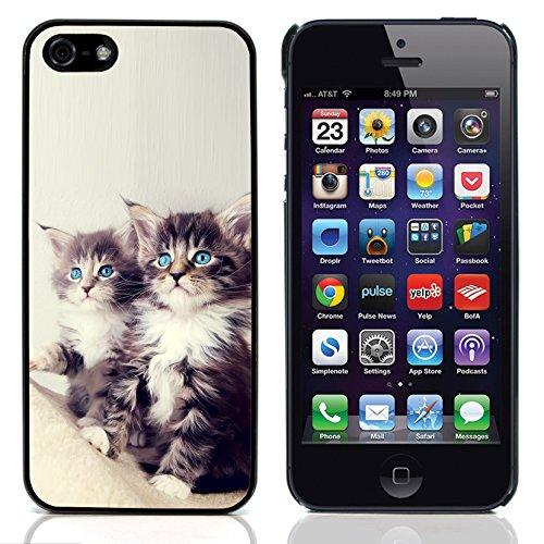 Graphic4You Baby Cats Love Tier Design Harte Hülle Case Tasche Schutzhülle für Apple iPhone 5 und 5S Design #7