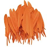 Hilai Approx. 50Pcs 4-6 Inches Dyed Goose Feather-Lily Orange