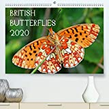 British Butterflies 2020 2020: A selection Of butterflies to be found in the UK. (Calvendo Animals)